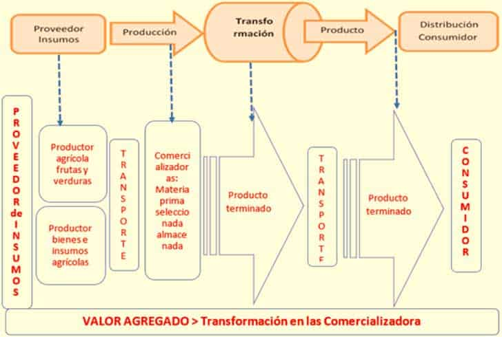 Relacionamiento de la cadena productiva general y la Fruver