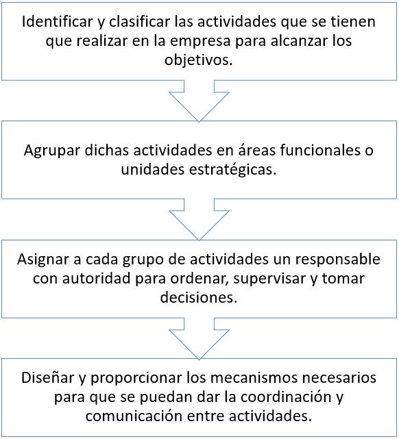 Actividades que conforman el proceso de estructura organizacional
