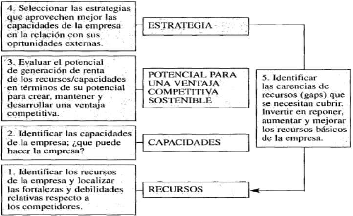 Figura 4: Enfoque basado en la Teoría de los Recursos y las capacidades para el análisis estratégico